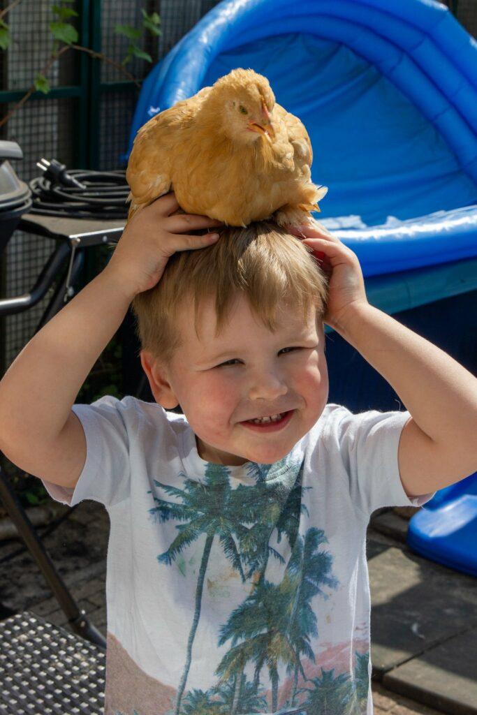 Huisdieren en kinderen: Kip op je hoofd