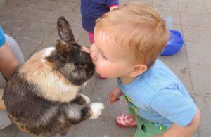 Huisdieren en kinderen: Een kus voor het konijn.