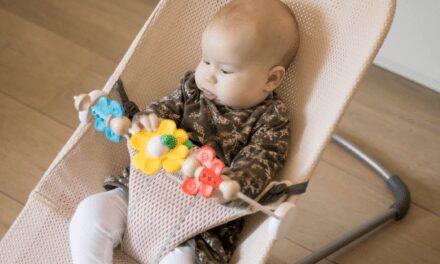 Review BabyBjörn Wipstoel Met Speelboog